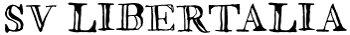svlibertalia Logo